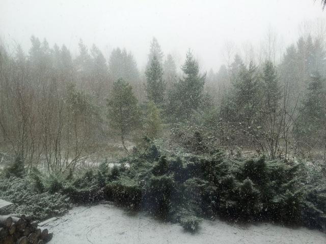 Devotional snow